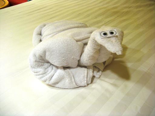 Canard en serviette de bain