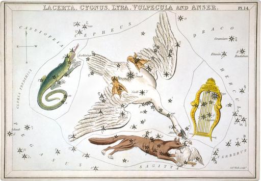 Carte astronomique de cinq constellations