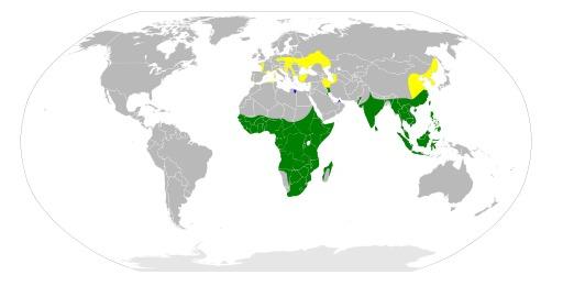 Carte de répartition du héron pourpré