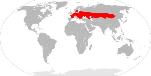 Carte de répartition du lézard des souches