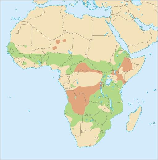 Carte de répartition du phacochère