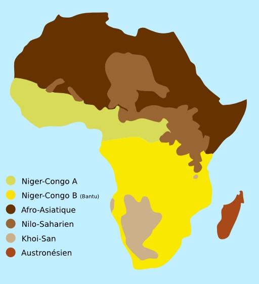 Carte des familles de langues sur le continent africain