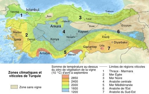 Carte des vignobles turcs