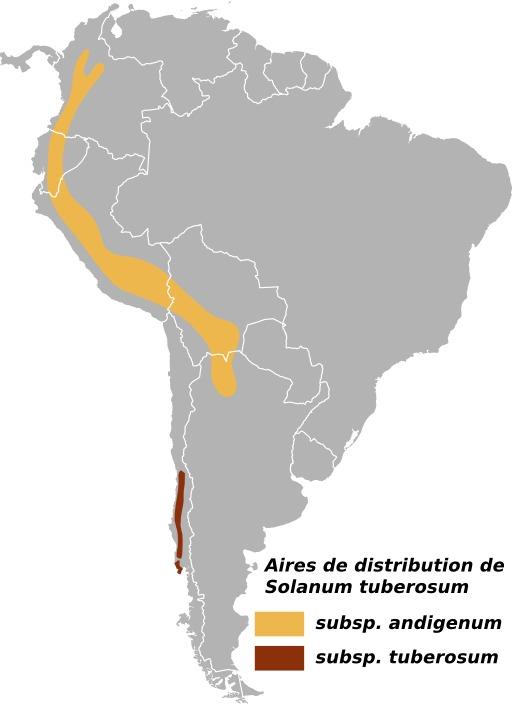 Cartographie de la pomme de terre dans les Andes