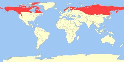 Cartographie du glouton