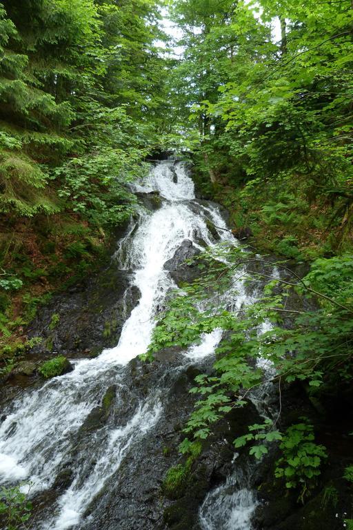 Cascade de Retournemer dans les Vosges