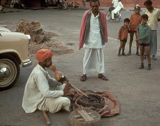 Charmeur de serpent jouant du pungi
