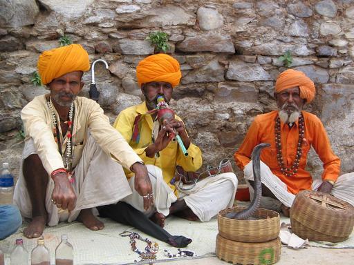 Charmeurs de serpent du Rajasthan