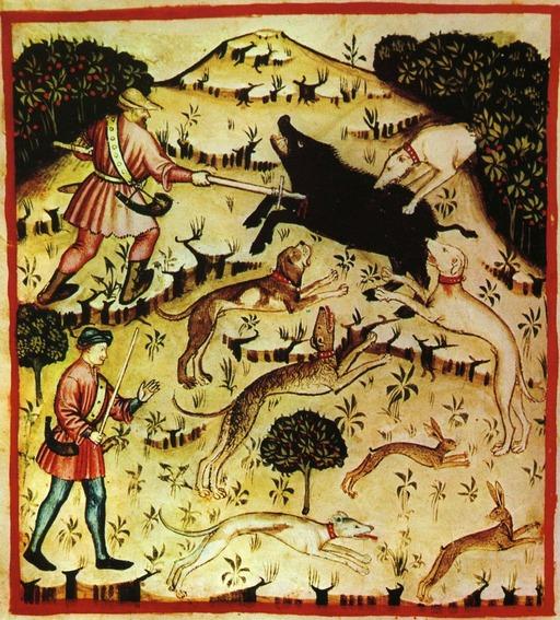 Chasse au sanglier et au lièvre au Moyen Age