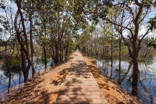 Chemin à Angkor