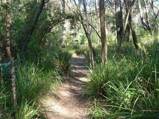 Chemin de randonnée en Australie