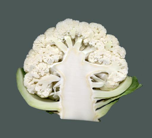 Chou-fleur - coupe longitudinale
