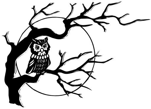 Chouette dans un arbre une nuit de pleine lune
