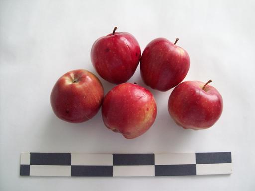 Cinq pommes