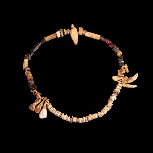 Collier préhistorique de coquillages