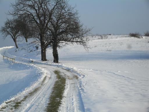 Colline sous la neige en Hongrie