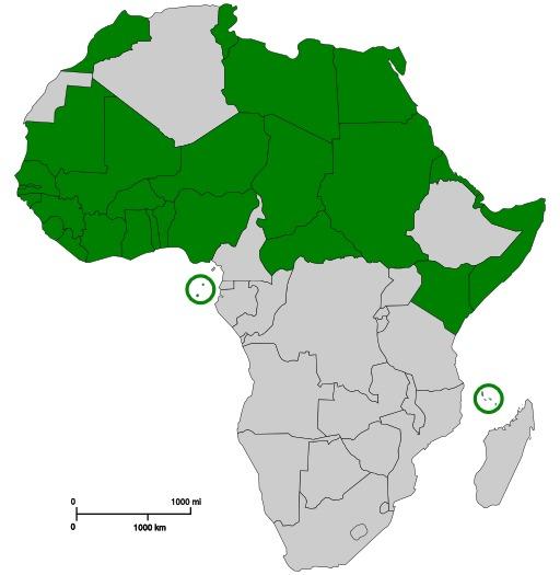 Communauté des Etats sahélo-sahariens