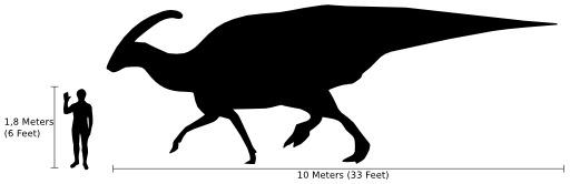 Comparaison de la taille humaine avec celle d'un dinosaure