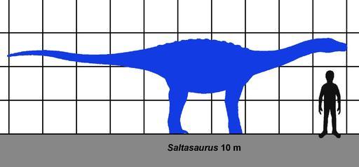 Comparaison de la taille humaine et d'un dinosaure