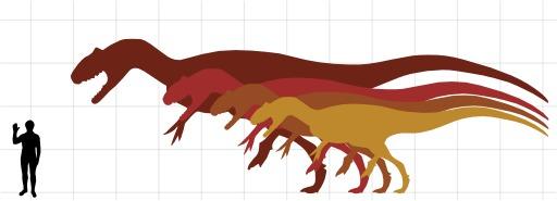 Comparaison de la taille humaine et de plusieurs dinosaures