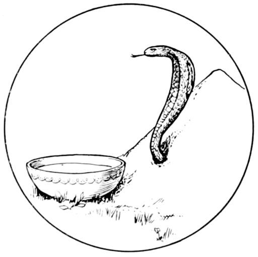 Conte indien du serpent d'or