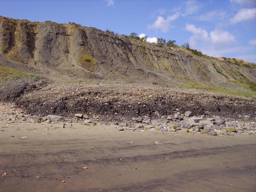 Coulées de terre avec fossiles du Jurassique