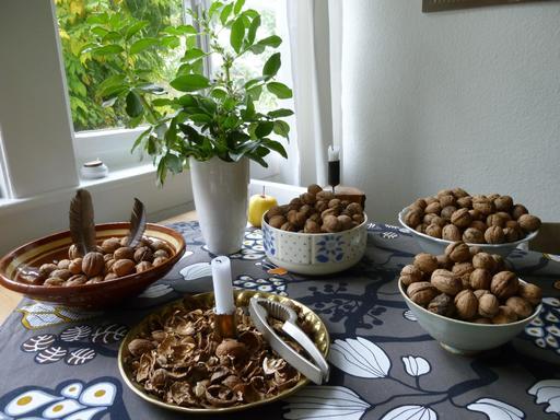 Coupes de noix avec casse-noix