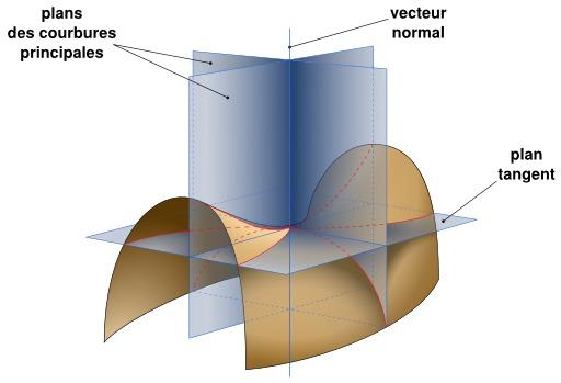 Courbures d'une surface minimale