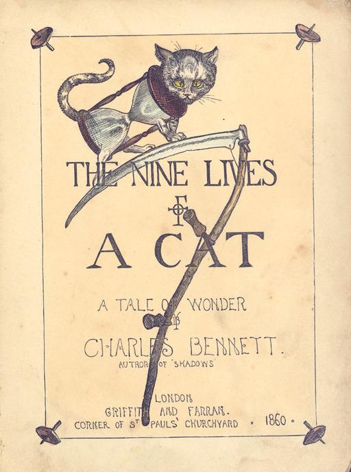 Couverture du chat à neuf vies