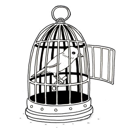 Croquis de canari en cage
