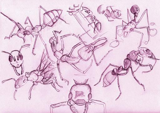 Croquis de fourmis