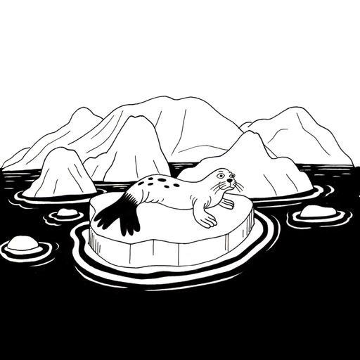 Croquis de phoque