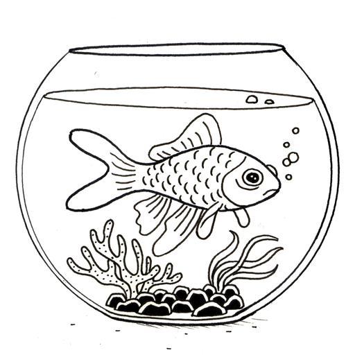 Ressources ducatives libres les for Aquarium poisson rouge bocal