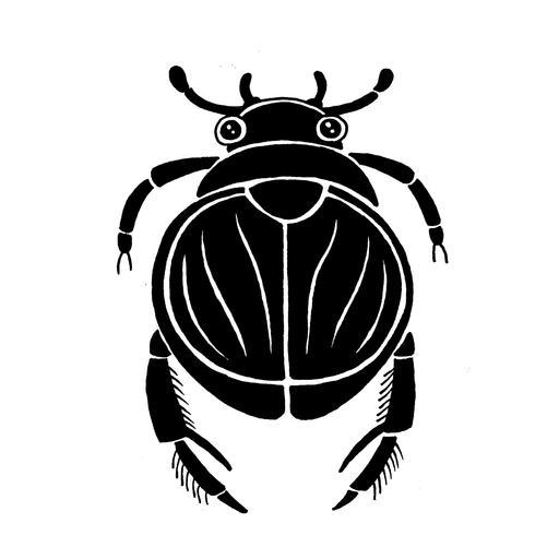 Croquis de scarabée