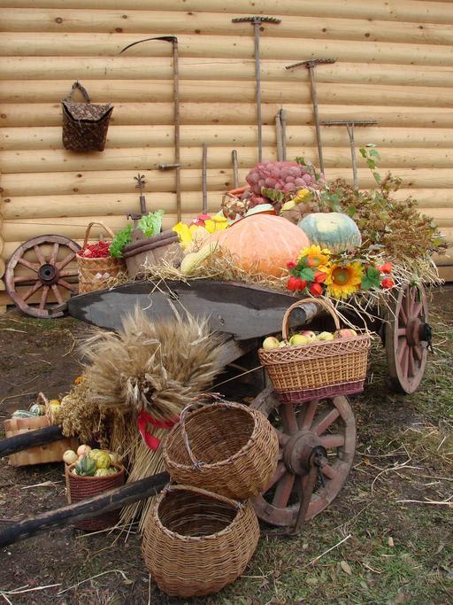 Cueillette d'automne en Russie