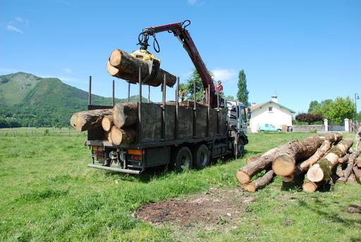 Déchargement de billes de bois à Lézignan
