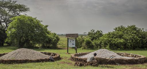 Défenses d'éléphants brulées à Nairobi