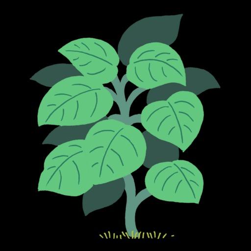 Dessin de plante grimpante verte