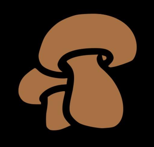 Deux champignons marrons