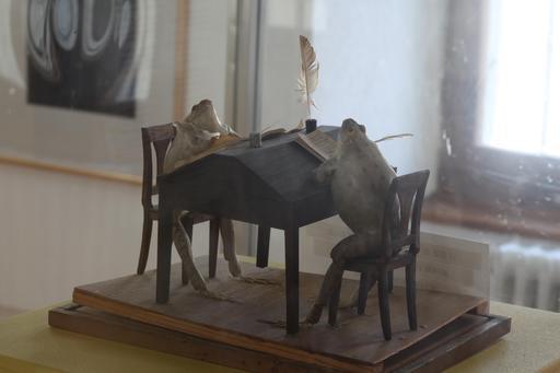 Deux grenouilles-notaires