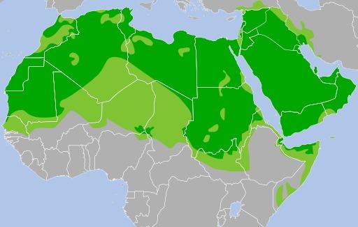 Diffusion de la langue arabe en Afrique et au Proche-Orient