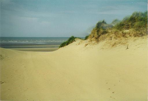 Dunes de sable et oyats à l'océan