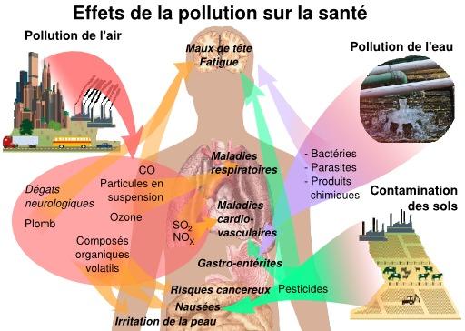 Effets de pollutions sur la santé humaine
