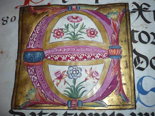 Enluminure de la lettre H du Psalterium nocturnus