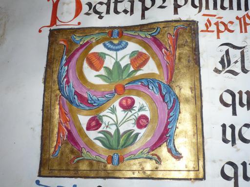 Enluminure de la lettre S du Psalterium nocturnus
