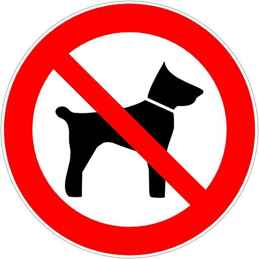 Entrée interdite aux animaux de compagnie