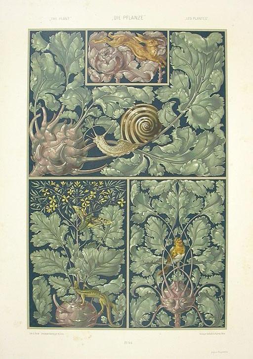 Escargot, rouge-gorge et lézard