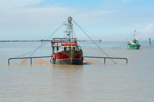 Estuaire de la Gironde - pêche au carrelet
