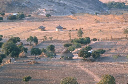 Fermes Shona au Zimbabwe