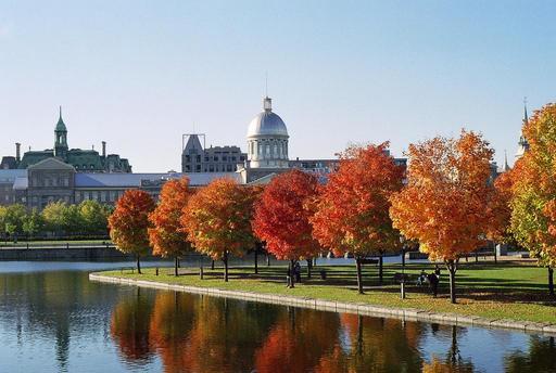 Feuillages d'automne à Montréal